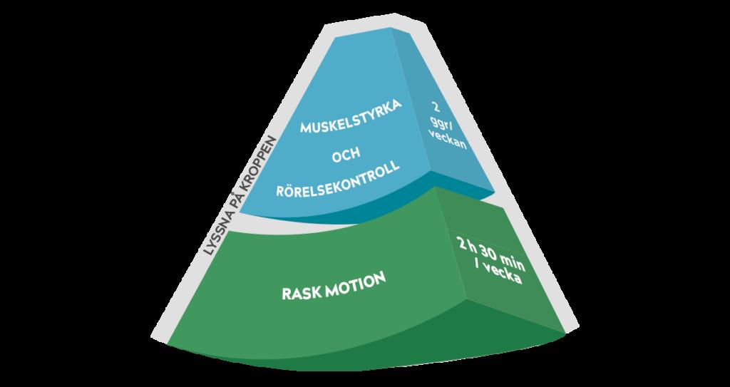 Raskana olevan liikkumisen suosituksen yläosa: lihaskunto ja liikkuvuus sekä reipas liikkuminen.