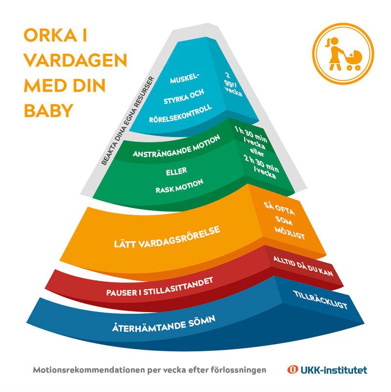 Juuri synnyttäneille tarkoitetun liikkumisen suosituksen pääkuva ruotsiksi.